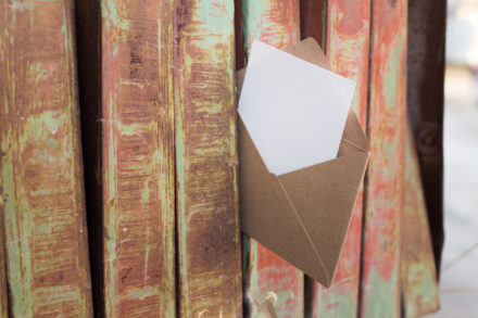 Lettera aperta a Susanna Tamaro